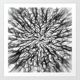 Branching Out in Black and White Art Print