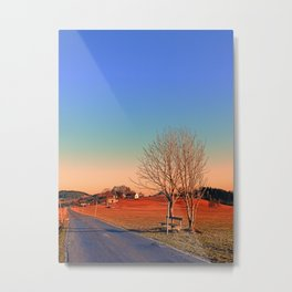 Country road, trees, a bench and a sundown | landscape photography Metal Print