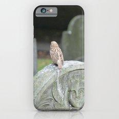 Sparrow in King's Chapel Burying Ground Boston Slim Case iPhone 6s
