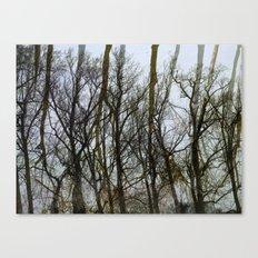 Treescape Canvas Print
