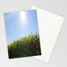 Summer Photos, Nature Photography, fine art gifts, Landscape Photo, sunshine photo Stationery Cards