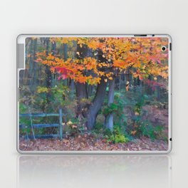 Autumn Trail at Lums Laptop & iPad Skin