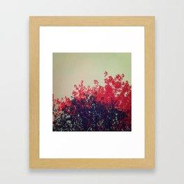- 034. Framed Art Print