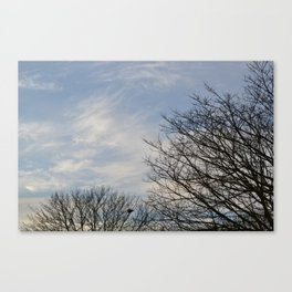 Blue Sky and Trees Canvas Print