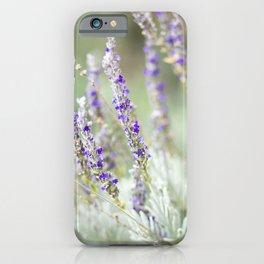 Lavandula Angustifolia (Lavender) iPhone Case