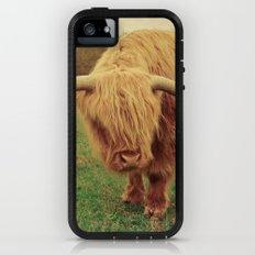 Scottish Highland Steer - regular version iPhone (5, 5s) Adventure Case