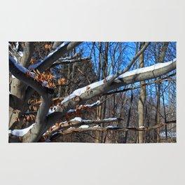 Branch Frosting Rug