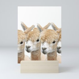 Alpaca Line Up Mini Art Print