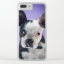 Super Pets Series 1 - Super Bugsy 2 Clear iPhone Case