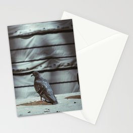 Oh Really Now? Stationery Cards
