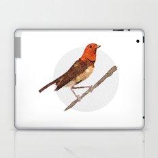 Messenger 006 Laptop & iPad Skin