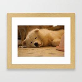 padpad Framed Art Print