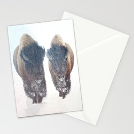 Two Bison in a Snow Storm Stationery Cards