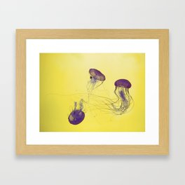 grape jellies Framed Art Print