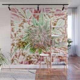 Flower Star Blooming Bud Indoor Hydro Grow Room Top Shelf Wall Mural