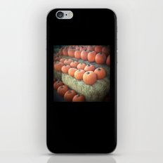 Pumpkins On Display iPhone & iPod Skin