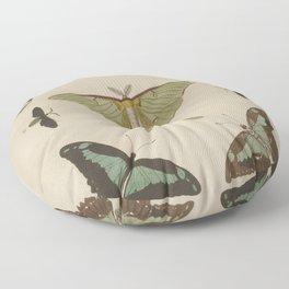 BUTTERFLIES Pieter Cramer Floor Pillow