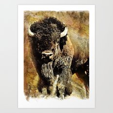 Rustic Buffalo Art Print