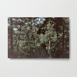 Forest Escape (Tivoli Park) Metal Print