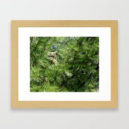 Can you find the owl Framed Art Print