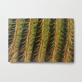 Cactus Closeup 2 Metal Print