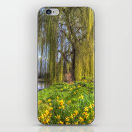 Daffodils and Willow Tree iPhone Skin