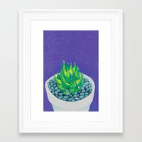 succulent Framed Art Prints featuring Succulent by marlene holdsworth