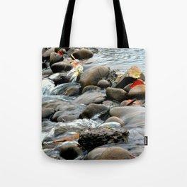 Water Through Stone Tote Bag