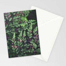 Fern Fronds Stationery Cards