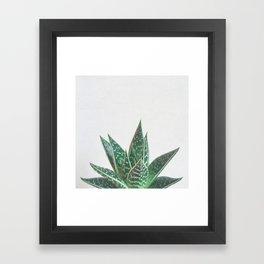 Aloe Tiki Framed Art Print