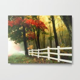 Fall scene with fence Metal Print
