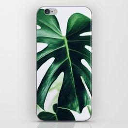 spring monstera iPhone Skin