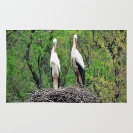Storks Rug