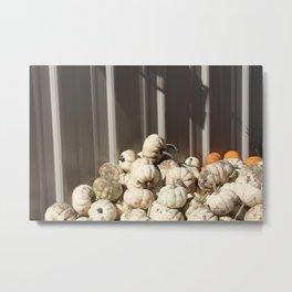 Ghost Pumpkins Metal Print