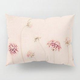 Cameo pink Pillow Sham
