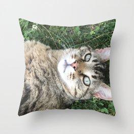 Cat in Clover 2 Throw Pillow
