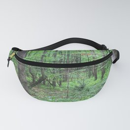 Show Me The Way Fanny Pack