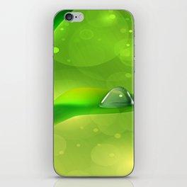 Bambus mit Wassertropfen iPhone Skin