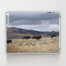 Bison in Yellowstone National Park Laptop & iPad Skin