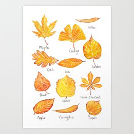 yellow leaves collection Art Print