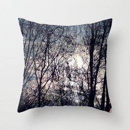 Clair Obscur Throw Pillow