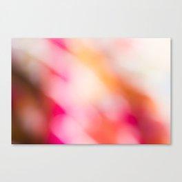 Pink Colours Canvas Print