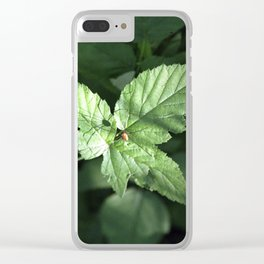 Mr Spider Clear iPhone Case