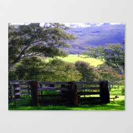 Cattle Yard Canvas Print