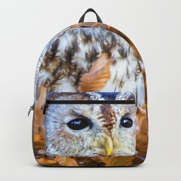 Little Owl Backpack