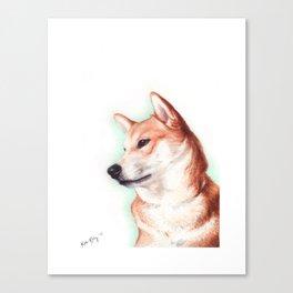 Shiba Inu Canvas Print