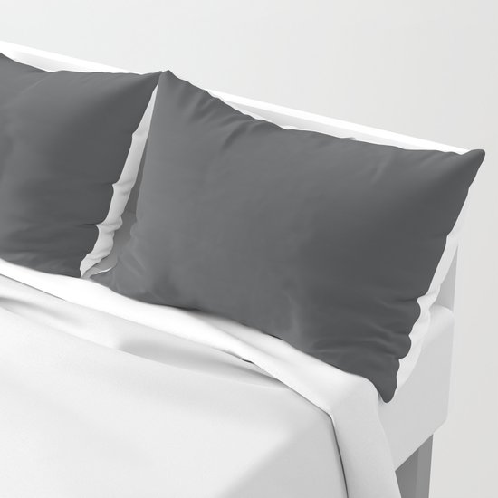 Dunn & Edwards 2019 Curated Colors Dark Engine (Dark Gray / Charcoal Gray) DE6350 Solid Color by simplysolids