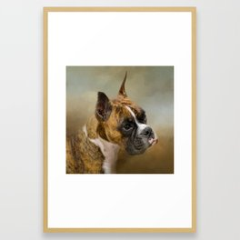 Golden Brindle Boxer Framed Art Print