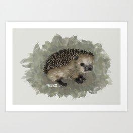 European hedgehog (Erinaceus europaeus) Art Print
