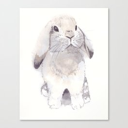 Gray and brown little cute bunny rabbit Canvas Print